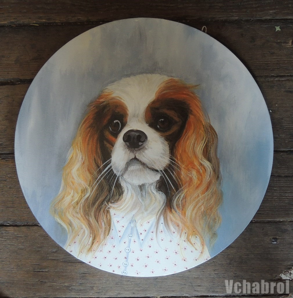 chien king charles